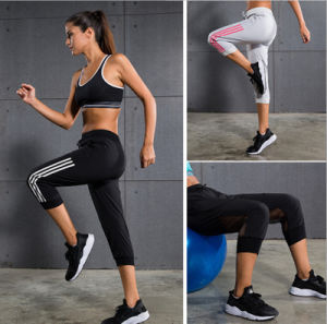 Hot Sale High Quality Mesh Insert Sexy Leggings Cropped Women Custom Yoga Pants pictures & photos