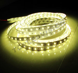 LED Strip Compliant with IEC/En62471 pictures & photos