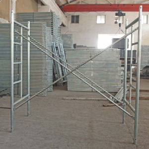 Ladder Type Scaffold