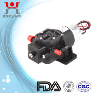 Hydraulic Water Pump Electric Mini Pump (DP005B1)