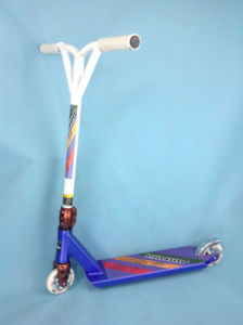Kick Scooter (ZCN010)