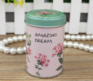 Mini Gift Metal Canister Tin Box pictures & photos