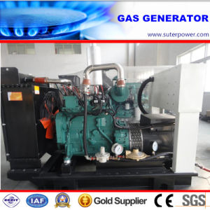 75kVA/60kw Electric Natural Gas Generator with Cummins Engine