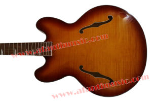Afanti Music 12 Strings Hollow Body Electric Guitar (AHY-045) pictures & photos