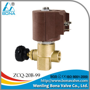 Solenoid Valve For Steam(ZCQ-20B-99) pictures & photos