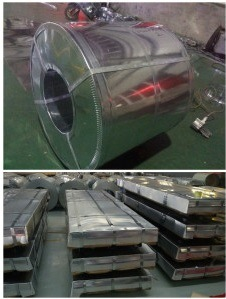 0.13mm-0.9mm Hot Dipped Galvanized Steel Coil