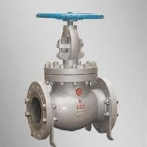 Stainless Steel Investment Casting Solenoid Check Valve pictures & photos
