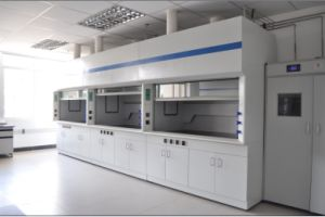 2015 Canton Fair Promotional Lab Steel Fume Hood pictures & photos