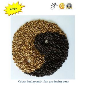 Black Malt for Producing Black Beer pictures & photos
