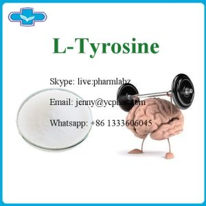 USP Grade Min High Quality Pharmaceuticals and Nutraceuticals L-Tyrosine