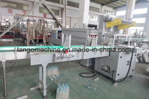 Automated Pet Bottle Water Bottling Plant with Reverse Osmosis Pure Water Treatment System pictures & photos