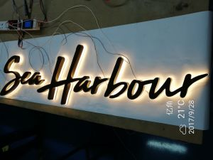 Back Lit Three D LED Hand Polished Stainless Steel Channel Letter pictures & photos