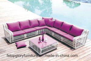 Open Weaving Modern Sofa Garden Furniture (TG-004) pictures & photos