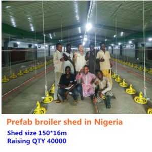 Customized Prefab Steel Structure Poultry House pictures & photos