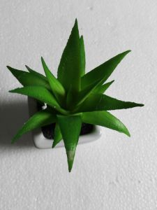 Artificial Plants and Flowers of Succulent Plant Gu-Sc055 pictures & photos
