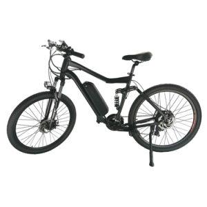 Electric Bike Hub Motor Electric Bike pictures & photos