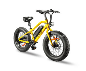 20inch Tire Small Fat Tire Electric Bicycle Lmtdn-02L pictures & photos