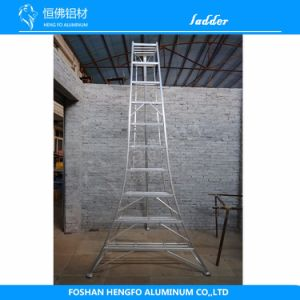 Agronomic Aluminium Ladder Aluminum Profile pictures & photos