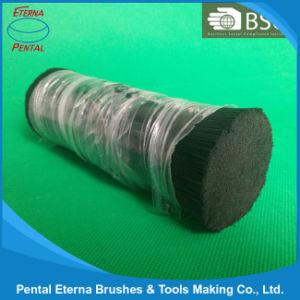 Pet, PBT PVC PP Nylon Filament pictures & photos