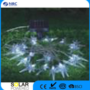 PP, PS Material 2V Single Crystal Silicon Solar String Light pictures & photos