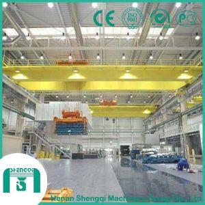 Workshop Equipment Double Girder Overhead Crane pictures & photos