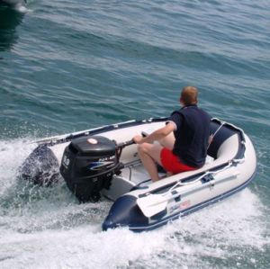 F15bwl 15HP Electric Start Outboard Motor pictures & photos