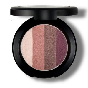 Naked and Light Make-up 4 Earth Color Eye Shadow pictures & photos