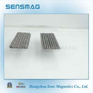 Professional Arc Permanent Rare Earth SmCo Magnet for Generator pictures & photos