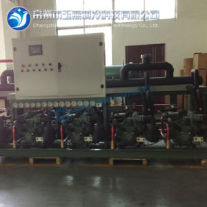 Refrigerated Condensing Unit for Food Refrigeration Compressor pictures & photos