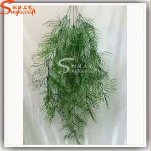 China Professional Wholesale Supplier Evergreen Grass IVY for Decoration pictures & photos