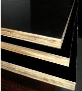 Film Faced Poplar/Eucalyptus Combi Plywood for Building