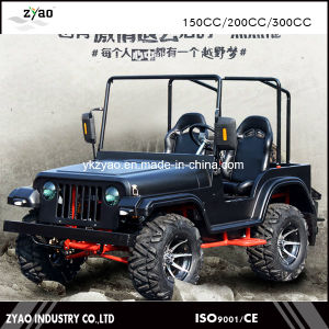 150cc 200cc Mini Willys/Kids Mini /Kids Go Kart 2017 Hot Selling pictures & photos