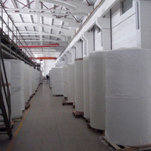 Insulation Material Food Grade Fiberglass Tissue Mat pictures & photos