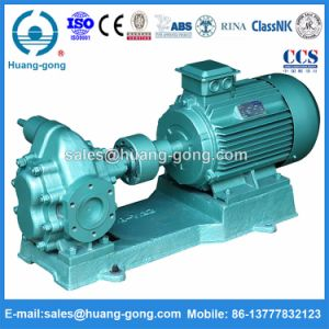 2cy29/3.6 Gear Pump for Vegetable Oil Transfer pictures & photos