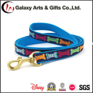 Fashionable Woven Logo Eco-Friendly Dog Lead Pet Supply Dog Leash for Sale pictures & photos