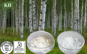 Betulinic Acid, Birch Bark Powder Extract pictures & photos