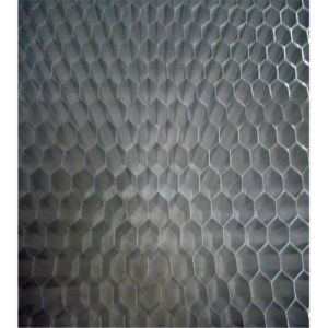 Stainless Steel Honeycomb Core (HR05) pictures & photos