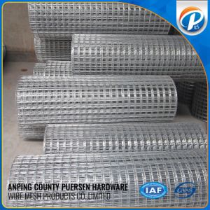 High Quality Various Material Elector Galvanized Welded Wire Mesh pictures & photos
