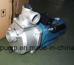 Easy Carry Big Water Capacity Electric Centrifugal Water Pump pictures & photos