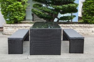 Garden Patio Wicker / Rattan Furniture Dining Set (LN-5079) pictures & photos