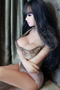 Agent Wanted Ce Certification 160cm Full Size 3D Sex Doll pictures & photos