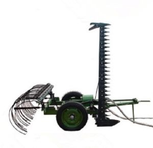 High Quality Mowing Hay Rake for Sale pictures & photos