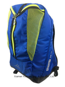 School Bag Leisure Backpack pictures & photos
