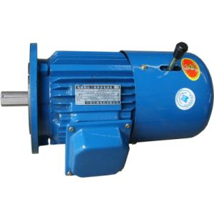 Y2ej Cast Iron Electromagnetic Brake Induction Motor pictures & photos