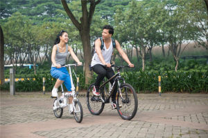 Aluminum Alloy 6061 Mini Shaft Drive Folding Bike pictures & photos