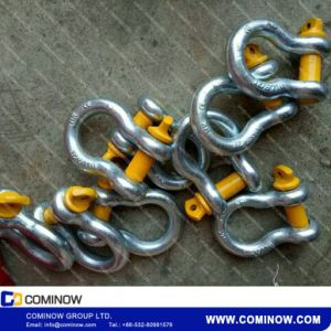 G209 Us Type Drop Forged Bow Shackle / Screw Pin Anchor Shackle Galvanized pictures & photos
