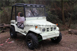 Four Colors Four Wheelers 300cc ATV for Adults pictures & photos
