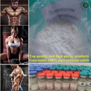GMP Manufacturer Hot Sale 99.5% Testosterone Phenylpropionate Steroid Powder pictures & photos