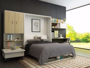 Double Sofa Wall Bed with Bookshelf pictures & photos