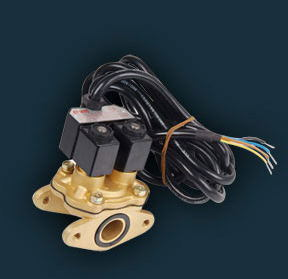 Solenoid Valve for Fuel Dispenser (MSF-25F) pictures & photos